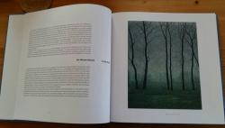 Gesneden Stilte, boek Grietje Postma, bomen winter