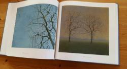 Gesneden Stilte, boek Grietje Postma
