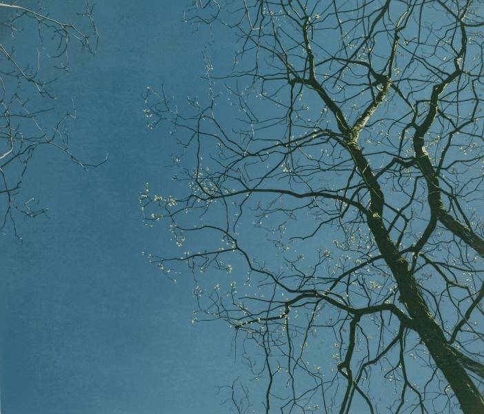 Houtsnede/Woodcut 1992-II