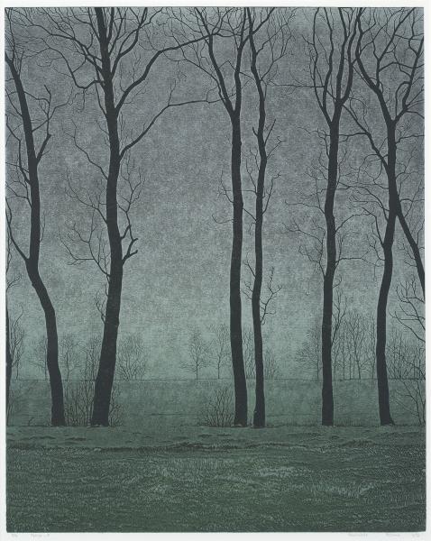 Houtsnede/Woodcut 1989-II