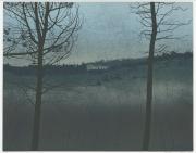 Houtsnede/Woodcut 1991-III