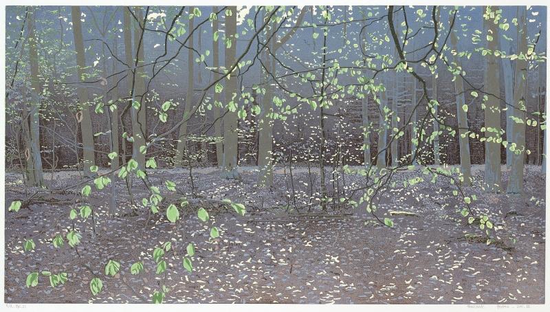Houtsnede/Woodcut 2011-III