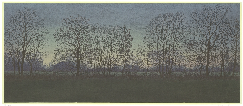 Houtsnede/Woodcut 2012-II