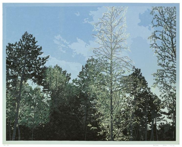 Houtsnede/Woodcut 2014-VI
