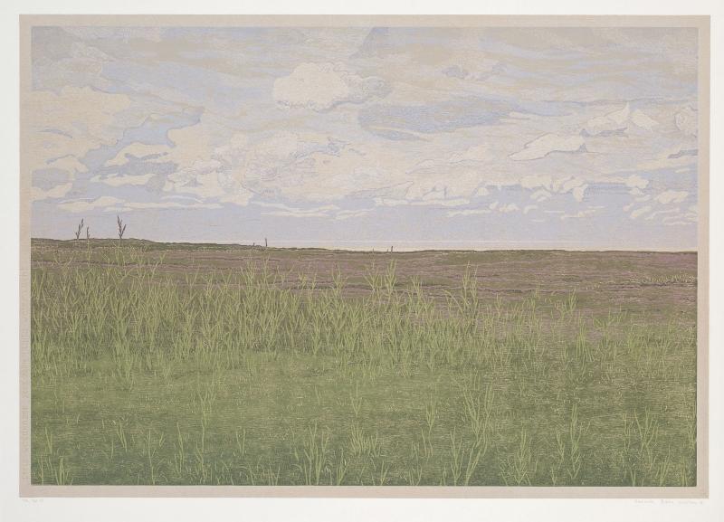 Houtsnede/Woodcut 2004-II