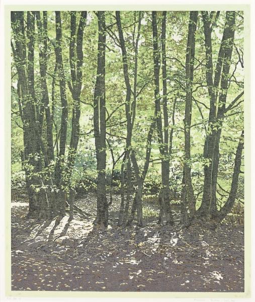 Houtsnede/Woodcut 2006-VIII