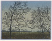 Houtsnede/Woodcut 2005-II